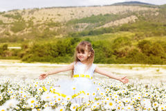 Cute child girl at camomile field Royalty Free Stock Photo