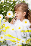 Cute child girl at camomile field Royalty Free Stock Photography