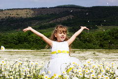Cute child girl at camomile field Stock Images