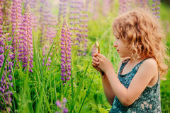 Cute child girl exploring nature with loupe on summer field Royalty Free Stock Photography