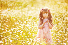 Cute child girl at field Royalty Free Stock Photography