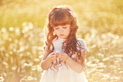 Cute child girl at field Royalty Free Stock Photo