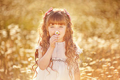 Cute child girl at field Stock Image