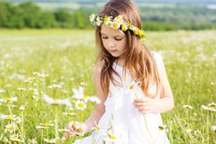 Cute child girl in green field Stock Photos