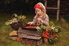 Cute child girl making rowan beads in autumn garden Royalty Free Stock Photos