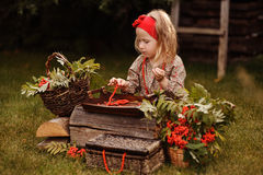 Cute child girl making rowan berry beads in autumn garden Royalty Free Stock Image