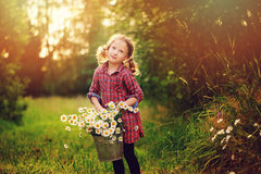 Cute child girl picking flowers outdoor on summer field, cozy mood Stock Image