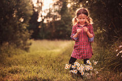 Cute child girl in plaid dress read fortune on chamomile flower on summer field Royalty Free Stock Photos