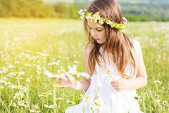 Cute child girl is playing with chamomile flowers Royalty Free Stock Photo