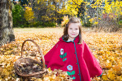 Cute child girl playing with fallen leaves in autumn Stock Photos
