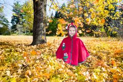 Cute child girl playing with fallen leaves in autumn Royalty Free Stock Image