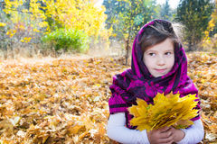 Cute child girl playing with fallen leaves in autumn Stock Images