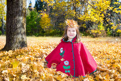 Cute child girl playing with fallen leaves in autumn Royalty Free Stock Photo