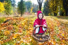 Cute child girl playing with fallen leaves in autumn Stock Photo