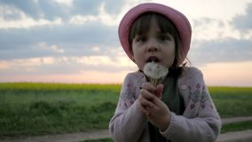 Cute child girl portrait in park play blow dandelion slow motion, female child blowing in blowball flower, happy stock video footage