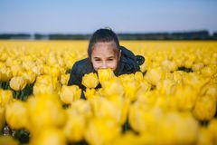 Cute child girl smelling a yellow tulip flower on a tulip fields royalty free stock images