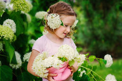 Cute child with hydrangea flowers bouquet in summer garden near flowering bush Stock Photos