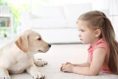 Cute child with Labrador Retriever stock images