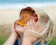 Cute child looking through a leaf. Cute child in nature looking through a leaf at beach stock photos