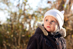 Cute child looks upward directed. Against the background blurred nature Stock Image