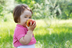 Cute child on a picnic Royalty Free Stock Photography