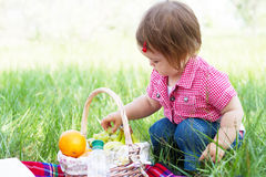 Cute child on a picnic Royalty Free Stock Images