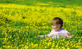 Cute child play on meadow stock photos