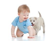 Cute child playing and crawling away a puppy, pupp stock image