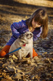 Cute child playing with pug dog autumn. Cute child playing with pug dog in field with fallen leaves autumn Stock Photography