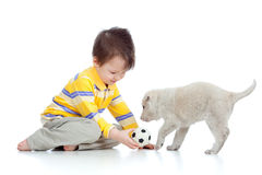 Cute child playing with a puppy stock photos