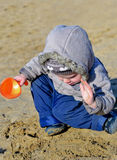 Cute child playing on the wet beach sand Royalty Free Stock Photography