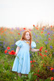 Cute child redhead posing near blooming poppy field with red wil Royalty Free Stock Photo