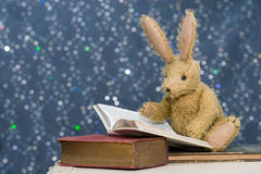 Cute child`s toy rabbit reading at story time. Stock Photography