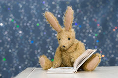 Cute child`s toy rabbit reading at storytime. Cute toy rabbit with long ears reading a book. Blue bokeh background. Storytime, child`s reading concept stock images