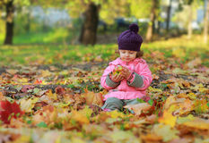 Cute child sitting on autumn bright Stock Photography