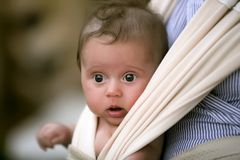 Cute child sitting in sling royalty free stock photos