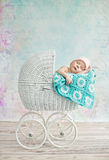 Cute child sleeping in the pram Stock Photography