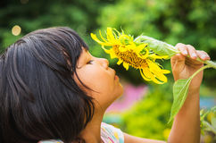 Cute child with sunflower Stock Image