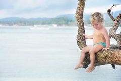 Cute child on a tree Royalty Free Stock Photos