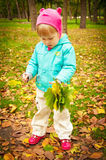 Cute child walking in autumn park Royalty Free Stock Images