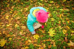 Cute child walking in autumn park Royalty Free Stock Photos