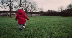 Cute child walking on green grass in park. Ireland 2016. Red Epic 4k. Slow motion. stock video