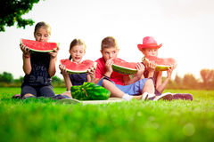 Cute children eating watermelon on a sunny day Royalty Free Stock Photos