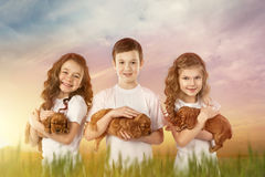Cute children holding red puppies outdoor. Kids pet friendship. Cute children, little girls and boy holding red puppies in field at sunset. Kids pet friendship Royalty Free Stock Photos