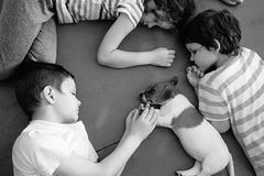 Cute children hug a sleeping puppy on the floors. Royalty Free Stock Photography