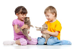 Cute children playing with kittens. On white background royalty free stock photography