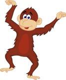 Cute chimpanzee dancing Stock Image