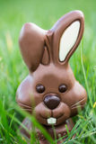 Chocolate bunny nestled in the grass Stock Photography