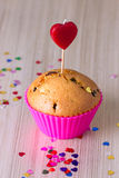 Cute Chocolate Cupcake Stock Image