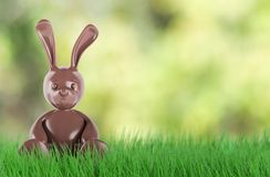 Cute chocolate easter bunny. 3 d render. A cute chocolate easter bunny. 3d rendering Stock Images